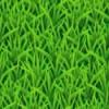 паттерн трава
